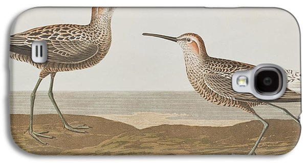 Long-legged Sandpiper Galaxy S4 Case by John James Audubon