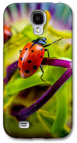 Look At The Colors Over There. Galaxy S4 Case by TC Morgan