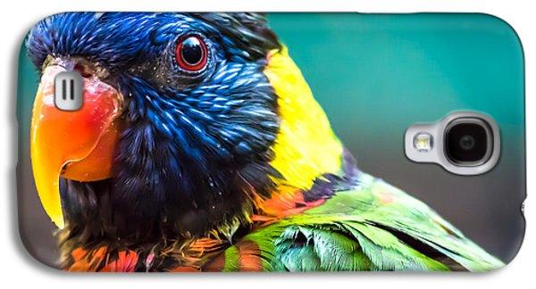 Lorikeet Glance Galaxy S4 Case
