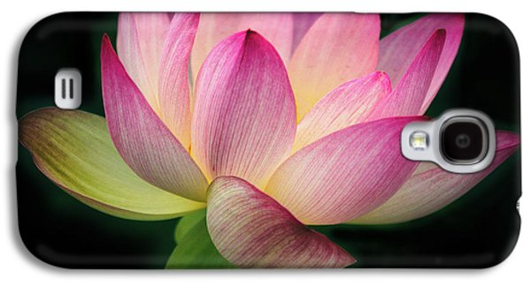 Lotus In The Limelight Galaxy S4 Case by Jessica Jenney