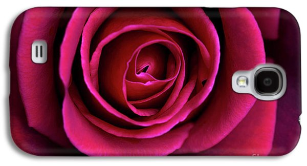 Galaxy S4 Case featuring the photograph Love Is A Rose by Linda Lees