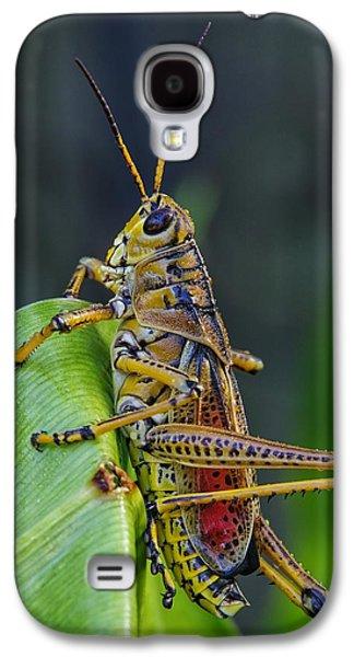 Lubber Grasshopper Galaxy S4 Case
