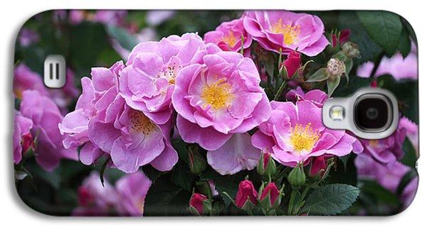 Lucky Floribunda Roses Galaxy S4 Case by Rona Black