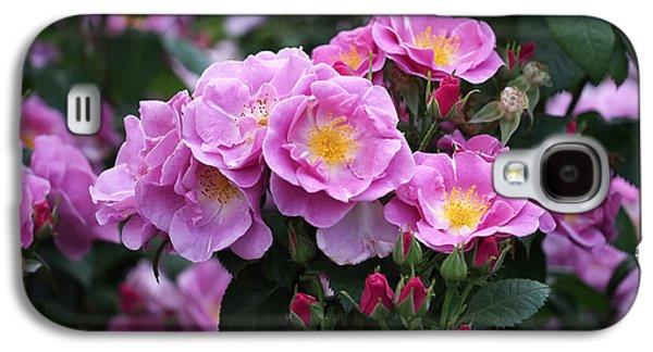 Lucky Floribunda Roses Galaxy S4 Case