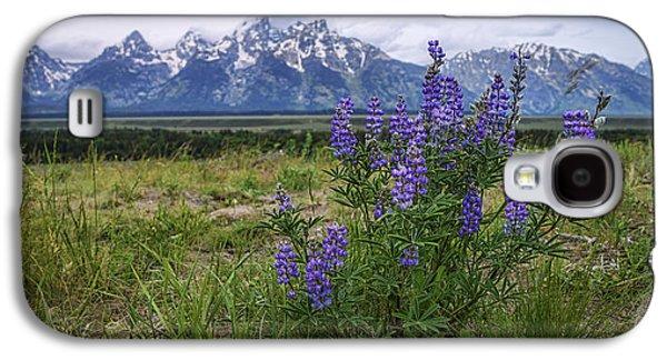 Mountain Sunset Galaxy S4 Case - Lupine Beauty by Chad Dutson