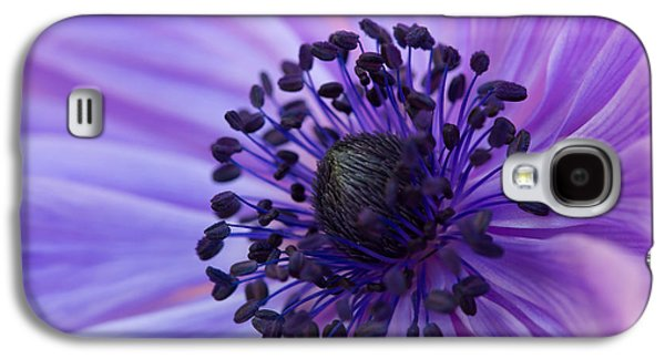 Macro Of Lavender Purple Anemone Galaxy S4 Case