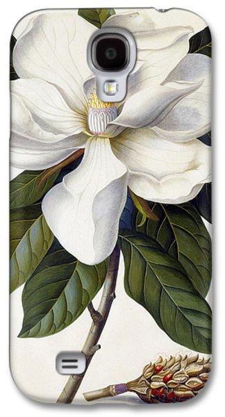 Magnolia Grandiflora Galaxy S4 Case by Georg Dionysius Ehret
