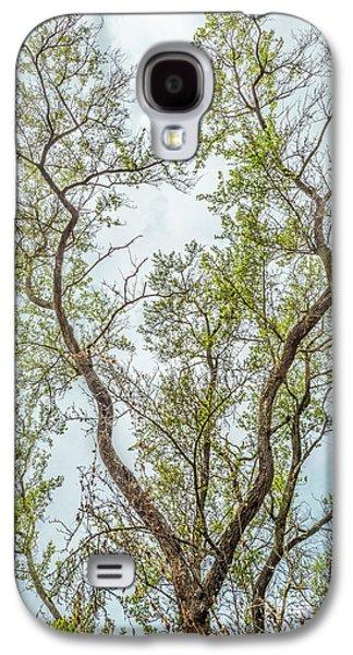 Majestic Mountain Mahogany Galaxy S4 Case by Alexander Kunz