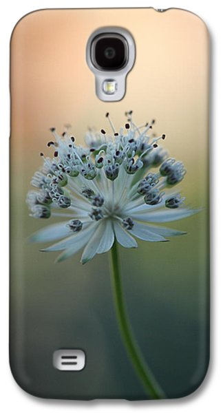 Botanica .. Make A Wish  Galaxy S4 Case
