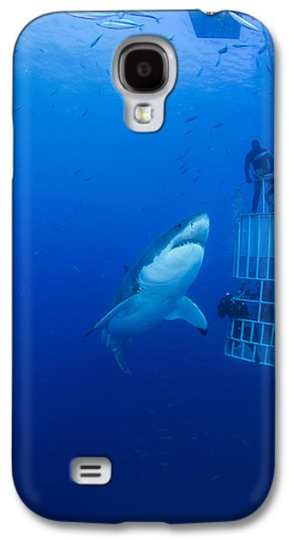 Sharks Galaxy S4 Case - Male Great White With Cage, Guadalupe by Todd Winner