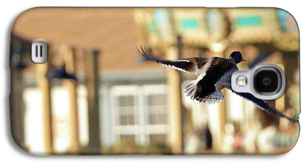 Mallard Duck And Carousel Galaxy S4 Case by Geraldine Scull