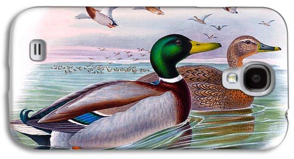 Mallard Or Wild Duck Antique Bird Print Joseph Wolf Birds Of Great Britain  Galaxy S4 Case by Orchard Arts