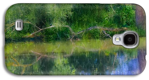Mandarins And Branch Artistic. Galaxy S4 Case by Leif Sohlman