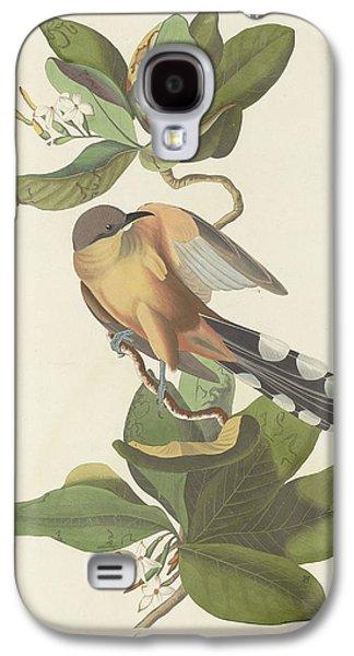 Mangrove Cuckoo Galaxy S4 Case by Rob Dreyer