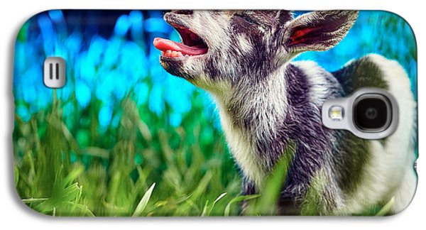 Baby Goat Kid Singing Galaxy S4 Case by TC Morgan