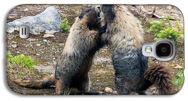 Marmot Battle Galaxy S4 Case