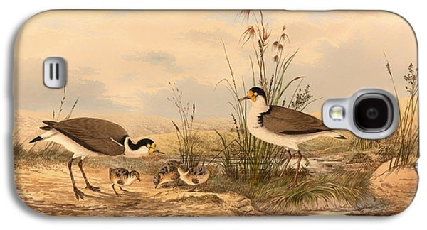Masked Lapwing Galaxy S4 Case by Mountain Dreams