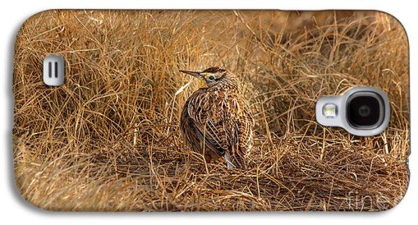 Meadowlark Hiding In Grass Galaxy S4 Case by Robert Frederick