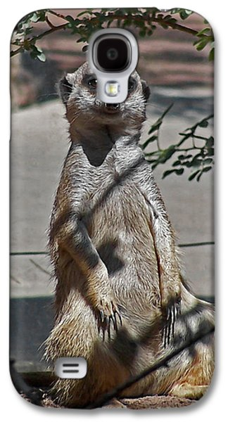 Meerkat 2 Galaxy S4 Case by Ernie Echols