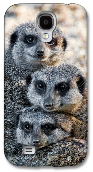 Meerkat Family Galaxy S4 Case by Ginger Wakem