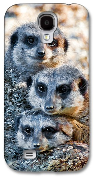 Meerkat Family's Bright Eyes Galaxy S4 Case by Ginger Wakem
