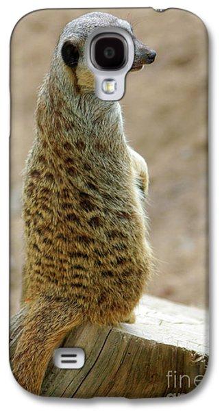 Meerkat Portrait Galaxy S4 Case