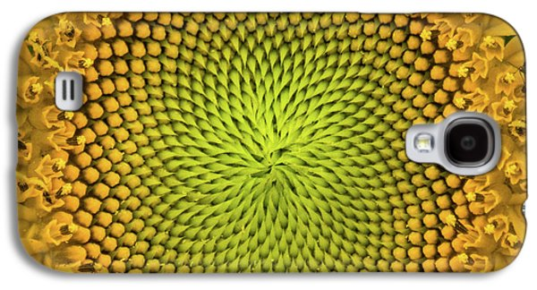 Galaxy S4 Case featuring the photograph Mesmerizing by Bill Pevlor