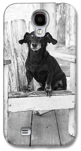 Miniature Dachshund Dog Sitting On An Adirondack Chair In Front  Galaxy S4 Case by Marie Dolphin