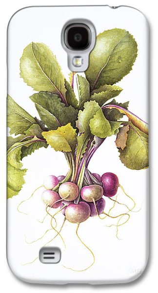 Miniature Turnips Galaxy S4 Case by Margaret Ann Eden