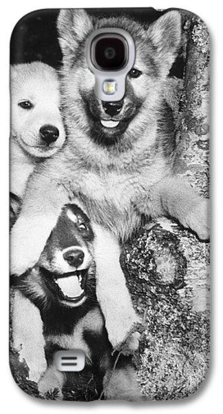 Mischievous Pups Galaxy S4 Case