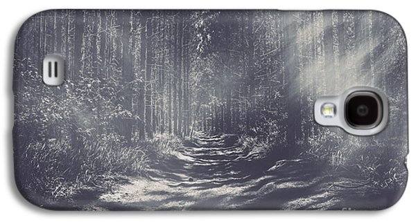 Misty Enchanted Pine Forest Galaxy S4 Case