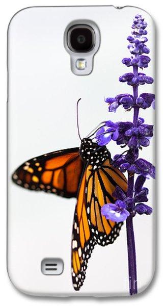 Monarch Butterfly Galaxy S4 Case