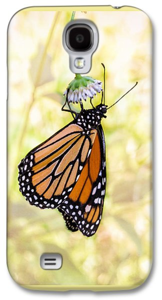 Monarch Butterfly Hanging On Wildflower Galaxy S4 Case