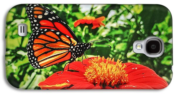 Monarch Of The Flowers  Galaxy S4 Case by Jame Hayes