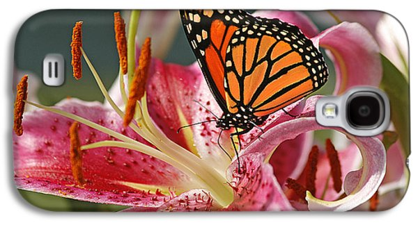 Lily Galaxy S4 Case - Monarch On A Stargazer Lily by Cindi Ressler