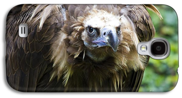 Monk Vulture 3 Galaxy S4 Case