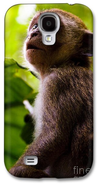 Monkey Awe Galaxy S4 Case