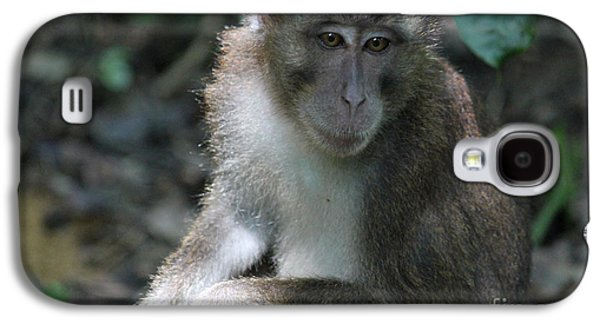 Monkey Business Galaxy S4 Case