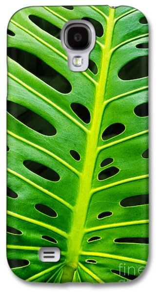 Nature Abstracts Galaxy S4 Cases - Monstera leaf Galaxy S4 Case by Carlos Caetano