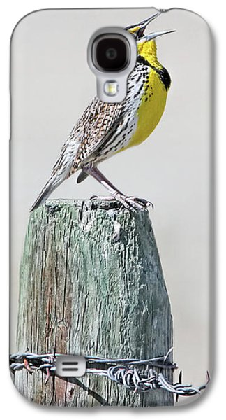 Meadowlark Galaxy S4 Case - Montana Meadowlark's Spring Song by Jennie Marie Schell