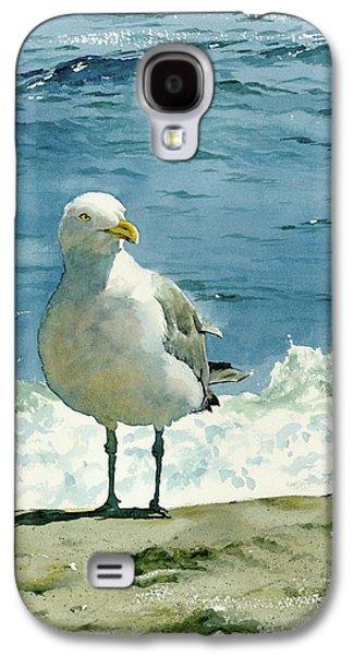 Beach Galaxy S4 Case - Montauk Gull by Tom Hedderich