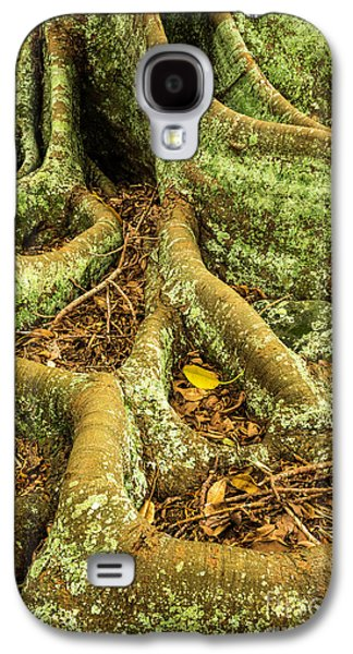 Galaxy S4 Case featuring the photograph Moreton Bay Fig by Werner Padarin
