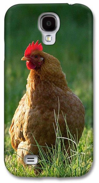 Morning Chicken Galaxy S4 Case