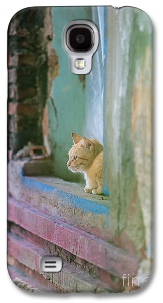 Morning In The Temple A Cats Perspective Galaxy S4 Case by Mike Reid