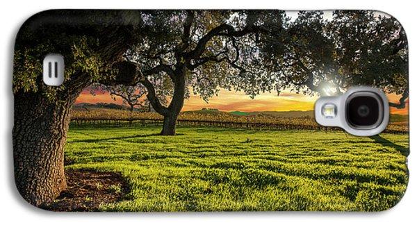 Morning In Wine Country Galaxy S4 Case by Jon Neidert