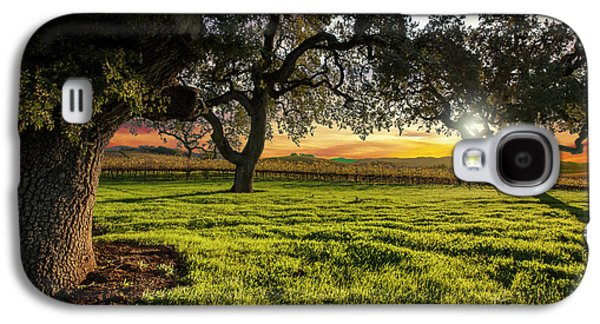 Morning In Wine Country Galaxy S4 Case