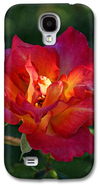 Morning Sunlight Galaxy S4 Case