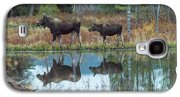 Mother And Baby Moose Reflection Galaxy S4 Case by Rebecca Margraf