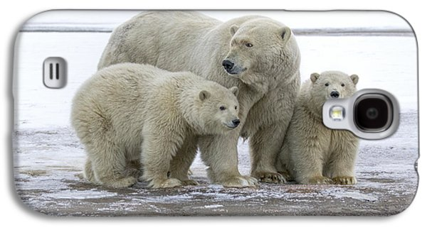 Mother And Cubs In The Arctic Galaxy S4 Case