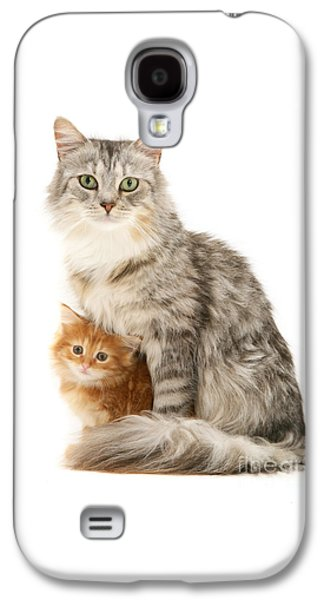 Mother Cat And Ginger Kitten Galaxy S4 Case